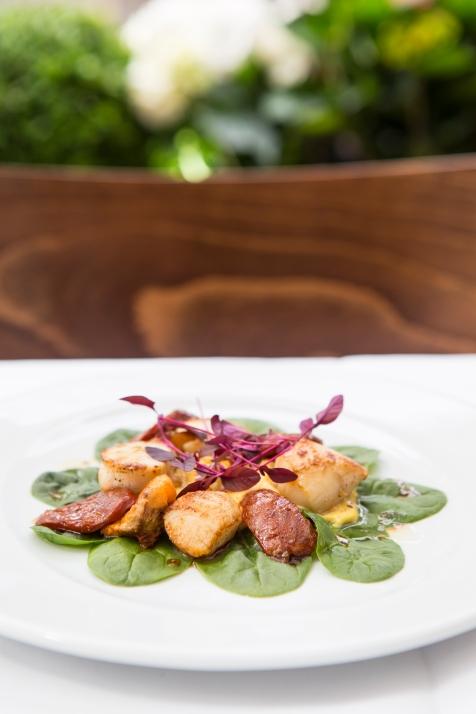 Capesante con Mais e Chorizo seared sea scallops with creamy sweetcorn & chorizo £9.5 (3)