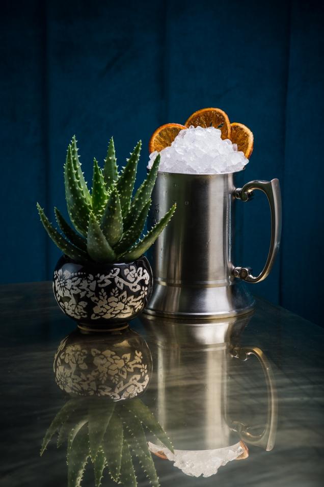 Mystic Cactus
