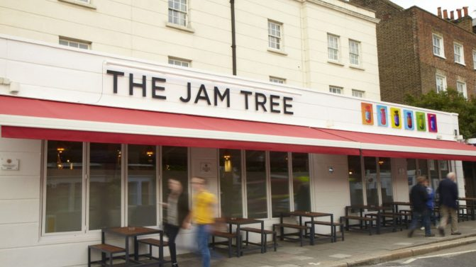 Outside Jam Tree
