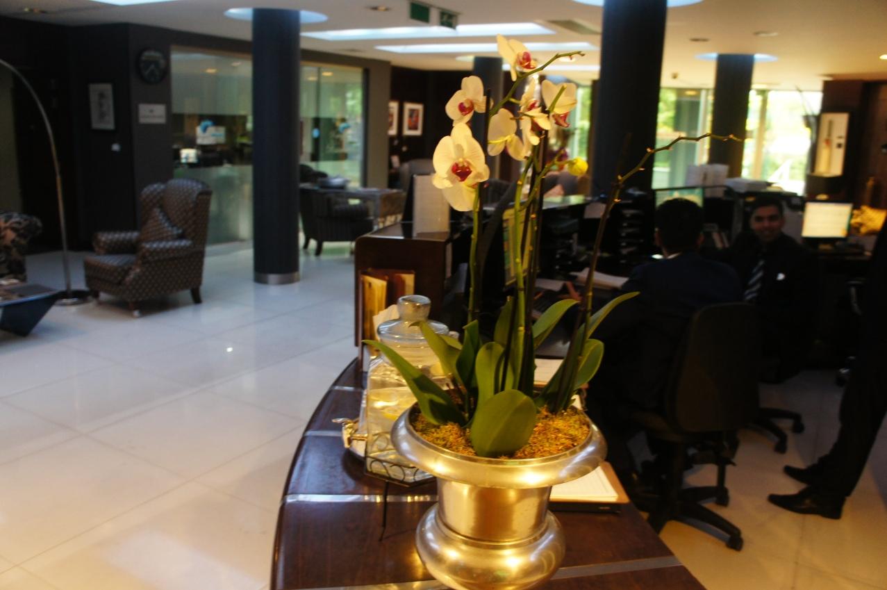 interior hotel rafayel